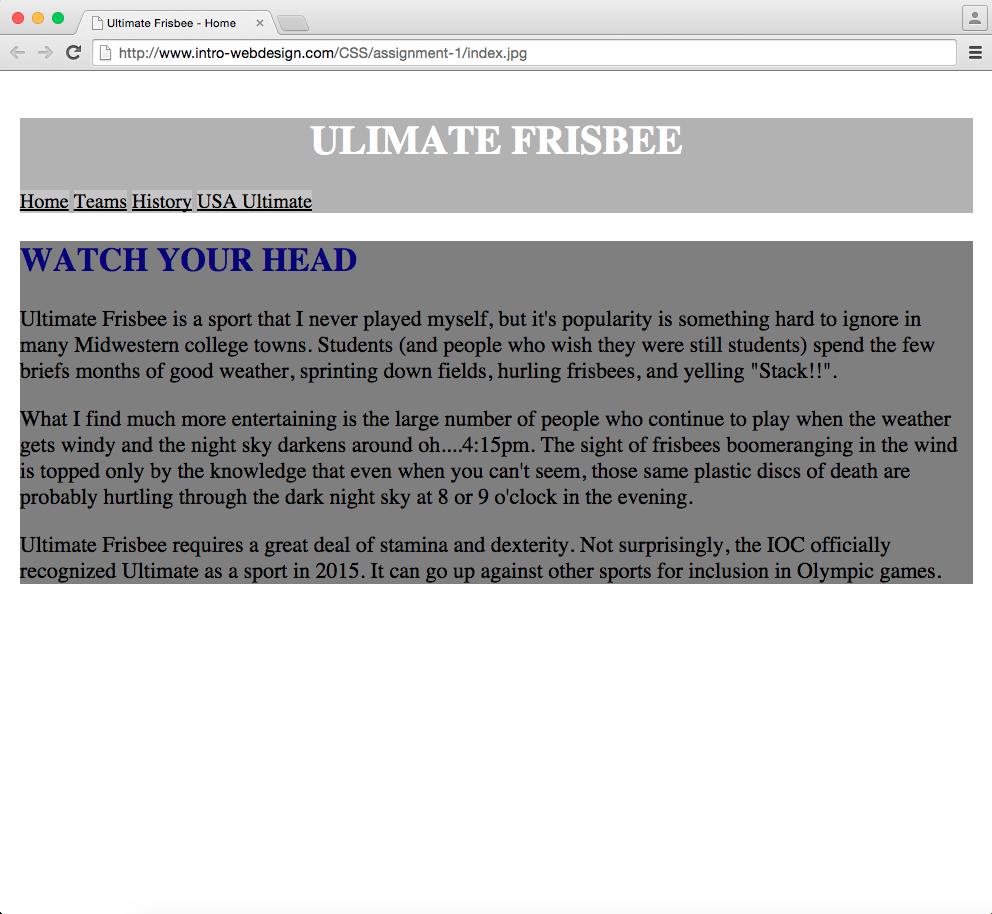 web design assignment example